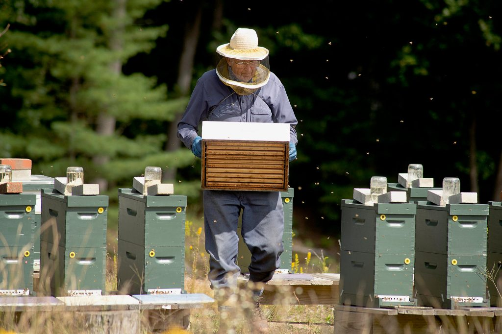 Beekeeping Equipments